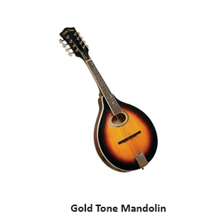 Gold Tone Mandolin