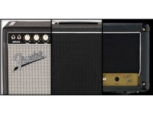 Guitar & Bass Amps