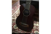 Kala Rumbler Acoustic Electric U-Bass Bass Ukulele | Floor Model
