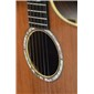 Breedlove Masterclass Focus SE Redwood with case