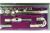 Trevor James AFBN2 Alto Flute case top