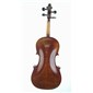 Amati P. Mathias AAA 4/4 Violin back