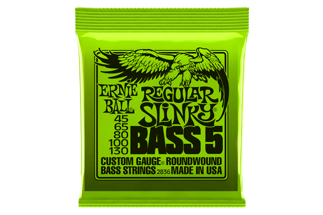 Ernie Ball 2836 5-String Bass