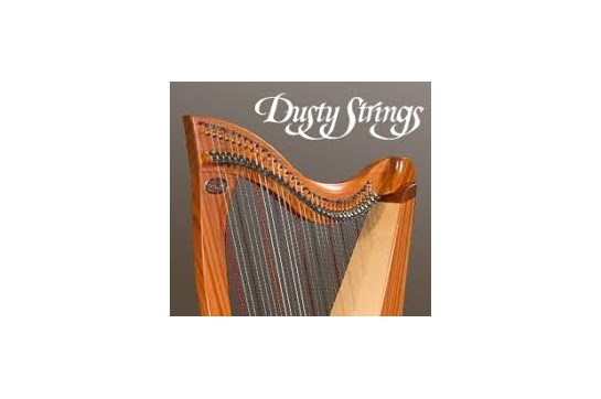 Dusty Strings .040 Red Harp String