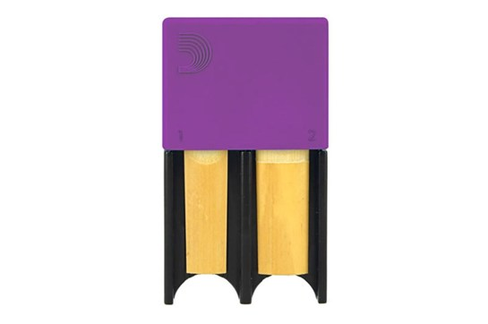 Purple Reed Guard