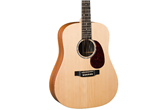Martin DX1KAE Acoustic-Electric Guitar