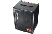TC Electronic BG250 250W 1x15 Bass Combo Amp with TonePrint