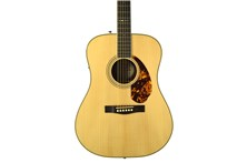 Fender PM-1 Limited Adirondack Dreadnought Rosewood
