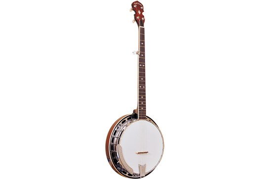 Gold Tone 5 String Bluegrass Resonator w/Flange BG-250F Banjo