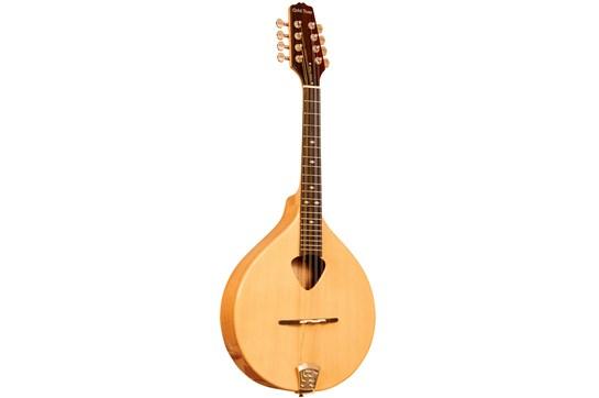 Gold Tone Irish Traditional w/Case Mandola