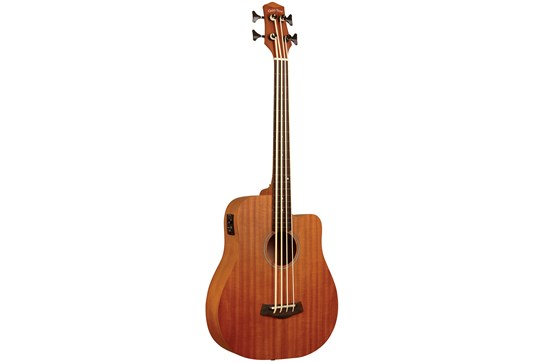 Gold Tone Acoustic Fretless Micro Bass 25