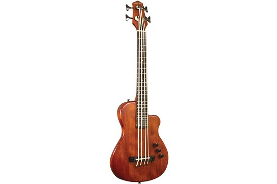 Gold Tone Acoustic Fretless Micro Bass 23