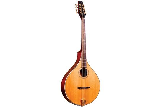 Gold Tone, Octave Mandolin