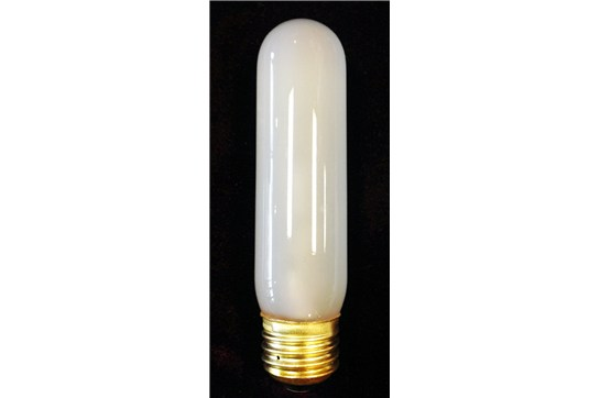 40 Watt Frosted Tubular Incandescent Light Bulb