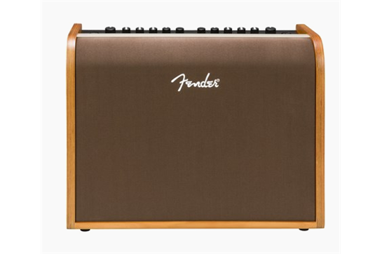 Fender Acoustic 100 Guitar Amp