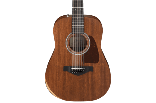 Ibanez AW5412JR 12-String - Open Pore Natural