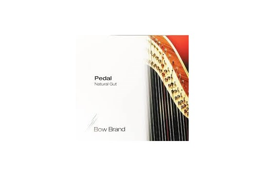 Bow 4th Octave C Gut Harp String - Red
