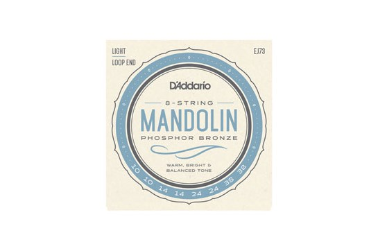 D'Addario EJ73 Light Mandolin Strings