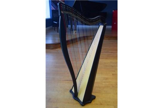 Dusty Strings Ravenna 34 Lever Harp - Black