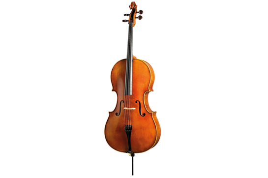 Paesold Cello PA605