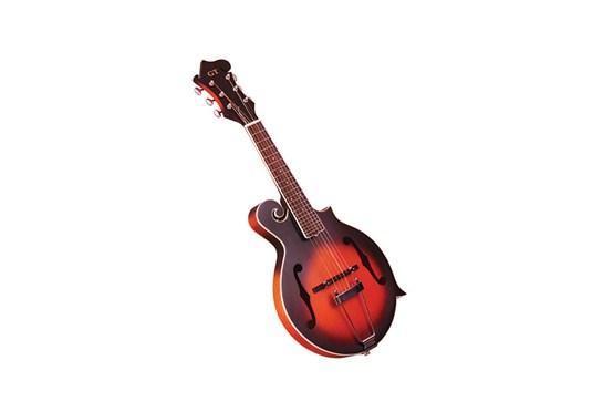Gold Tone F-6 Mando-Guitar