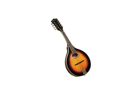Gold Tone GM-50 A-Style Mandolin