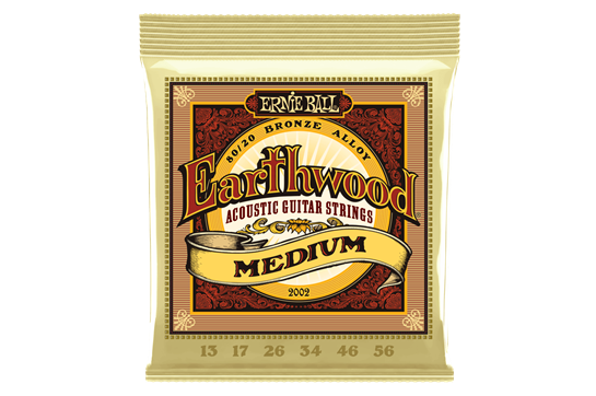 Ernie Ball Earthwood Medium 80/20 Bronze Acoustic Guitar Strings