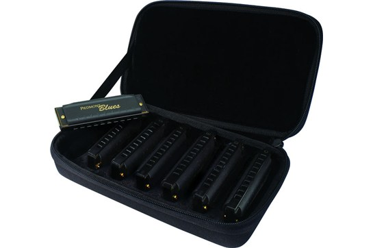 Hohner Piedmont Blues Harmonica 7-Pack w/Case