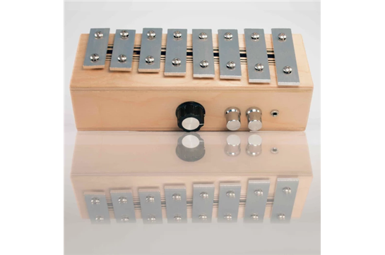 Brand New Noise Recorder Gadget Phone Home Xylophone