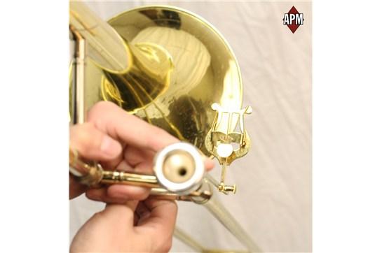 APM 514G Trombone Lyre (2-Piece Gold Brass)